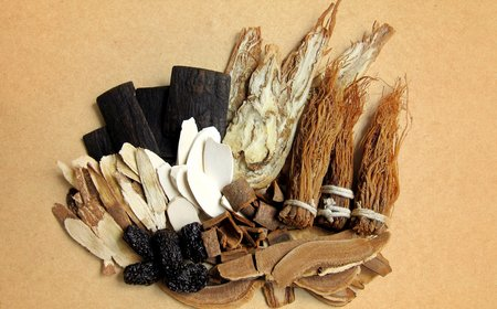A selection of unprocessed Chinese herbs